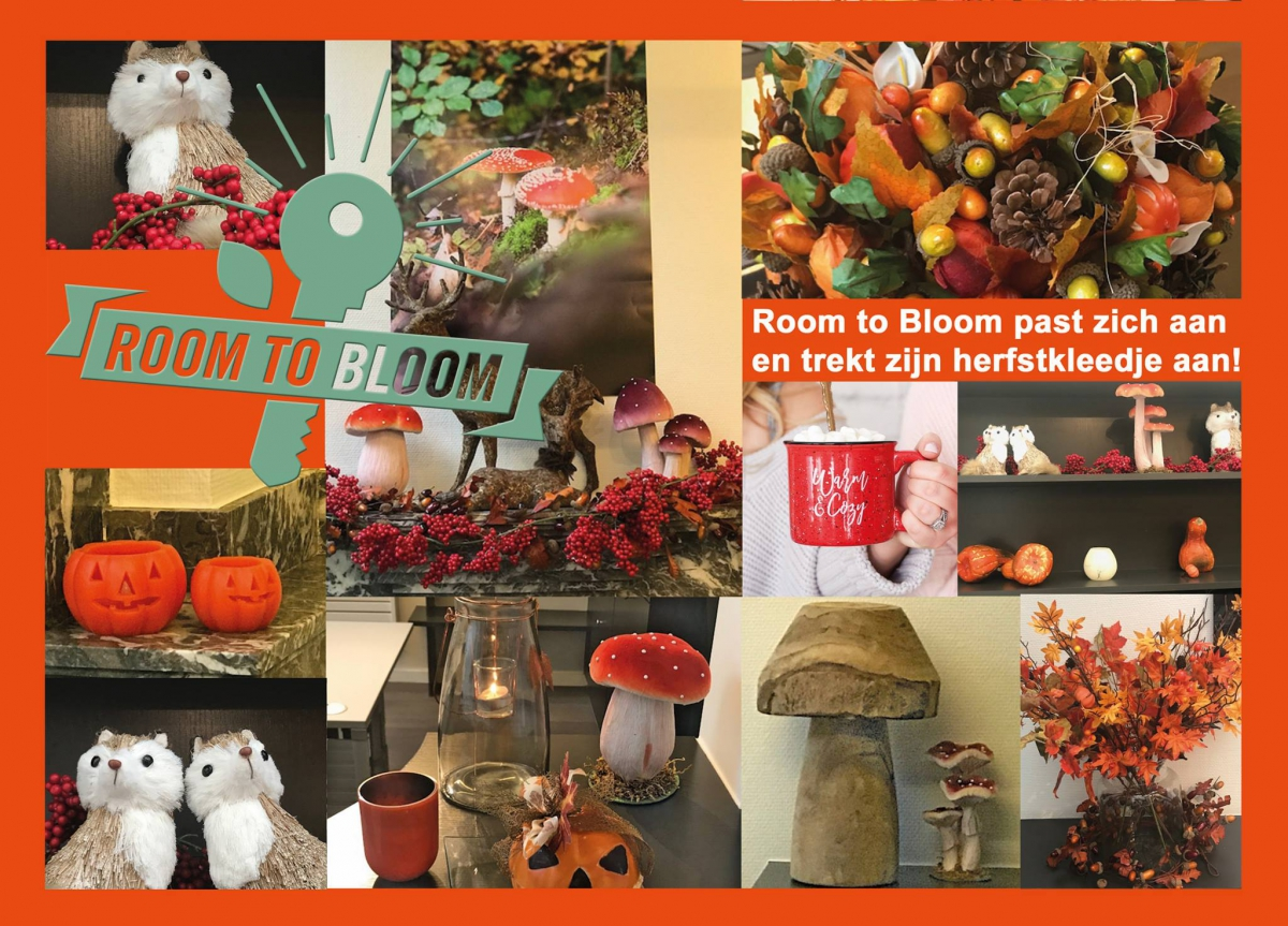 herfst bij Room to Bloom